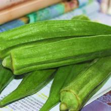 Best selling IQF processed frozen okra