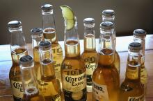 Corona 355ml. for sell