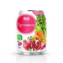250ml Can 100% Vegetable Juice - Juice for Nervousness