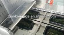 Stainless Steel 304 Vacuum Packaging Machine