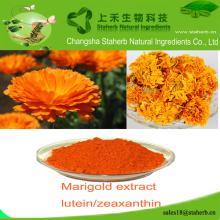 Free sample Marigold extract,Zeaxanthin,Colorant