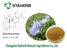 Best quality rosemary extract,Carnosic acid,Antioxidant