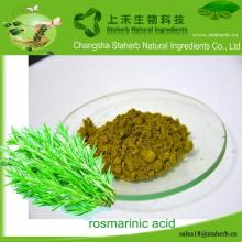 Hot sale rosmary extract, Rosmarinic acid,Antioxidant