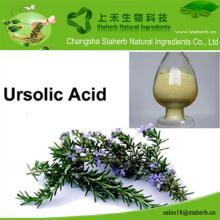 Chinese source  Rosemary  extract, Ursolic   acid ,Antioxidant