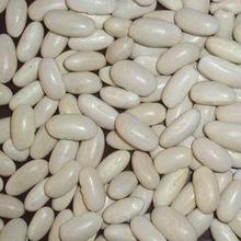 White/Red Kidney Beans Long and Round shape