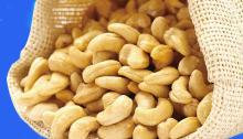 Raw Roasted broken cashew nuts/ Toasted Split Cashew nuts /