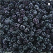 China Good Quality IQF Frozen Blackberry
