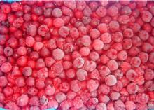 IQF Frozen Cherry