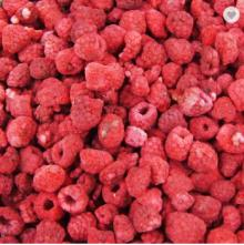 health freeze dried raspberry