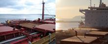 Milling Wheat CIF ports of Brazil