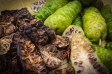 Noni Dried Fruit