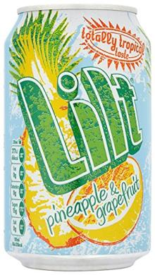 Lilt Pineapple and Grapefruit Drink 330 Ml (pack Of 24)
