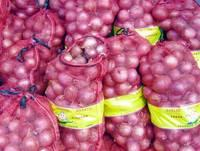 White Onion/Yellow Onion/Fresh Red Onion
