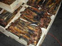 Dry Mackerel Fish, Herring Fish ,Dry Stockfish for Sell