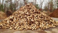 Firewood in net bags