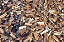 Kiln Dried Beech Firewood,Oak Firewood,Pine Firewood for sale
