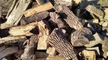 KD Firewood in Wooden Box Pallet
