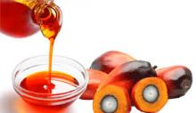Crude Palm Kernel Oil