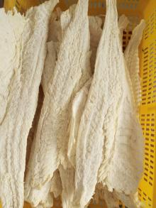 dried saletd cod fillet