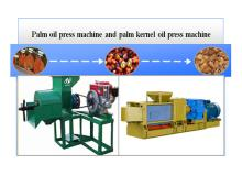 Palm oil and palm kernel oil press machine of DOING Company