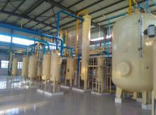 Wheat Germ  Oil   Extract ion  Machine  Subcritical Solvent Equipment