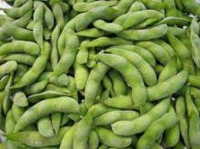 Frozen   edamame  Soybeans Pod