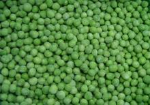 High quality of frozen ,iqf green peas