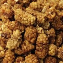 Sun Dried Mulberries