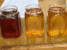 REFINED NATURAL HONEY