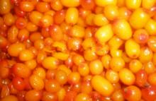 IQF Frozen Whole Sea Buckthorn