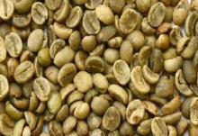 Washed arabica green coffee beans / Unwashed arabica green coffee beans..