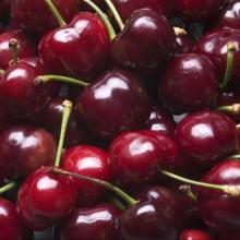 Dark Red Fresh Cherry Fruits for sale