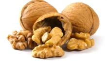 Suppliers Wholesale Organic Raw Walnuts in Shell Walnut Kernels