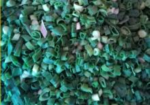 Hot types green IQF onion  Frozen   chive