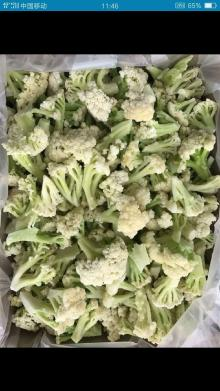 IQF frozen green stem cauliflower florets