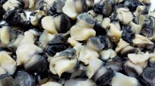 Frozen meat snail