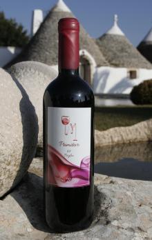 ITALIAN RED WINE Primitivo igt Puglia Bio