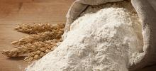 Best Quality Wheat Flour
