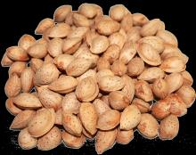 Raw Processing Almonds Nuts