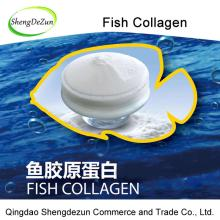 Food Grade Fish Collagen Powder