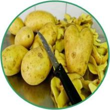 Native Potato Starch