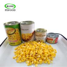 HACCP Certification and Canned Sweet Kernel Corn