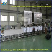 Tunnel Belt Type Frozen Meat/Chicken/Seafood Defrosting Machine
