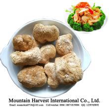 Natural Health Nutrition Food Dried Monkey Head Mushroom