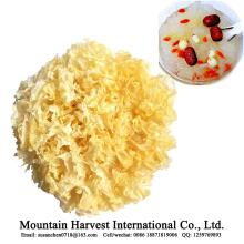Natural No Smoked Sulfur Bacteria Dried White Fungus