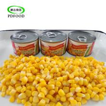 canned sweet corn kernel in vacuum pack