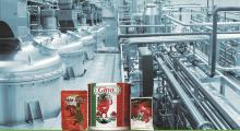 Automatic Tomato Paste Filling and Packaging Machine