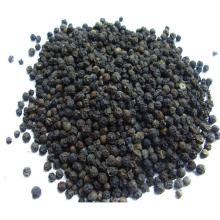 Quality Black Pepper for sale. 30% Discounts available now