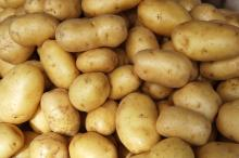 Organic Fresh Potatoes. 30% discount now on