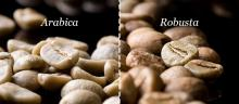 Arabica / Robusta Coffee Beans (Raw / Dried / Roasted). 30% discount available now